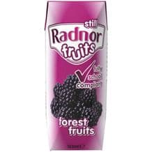 Radnor Fruits Carton Forest Fruits 200ml