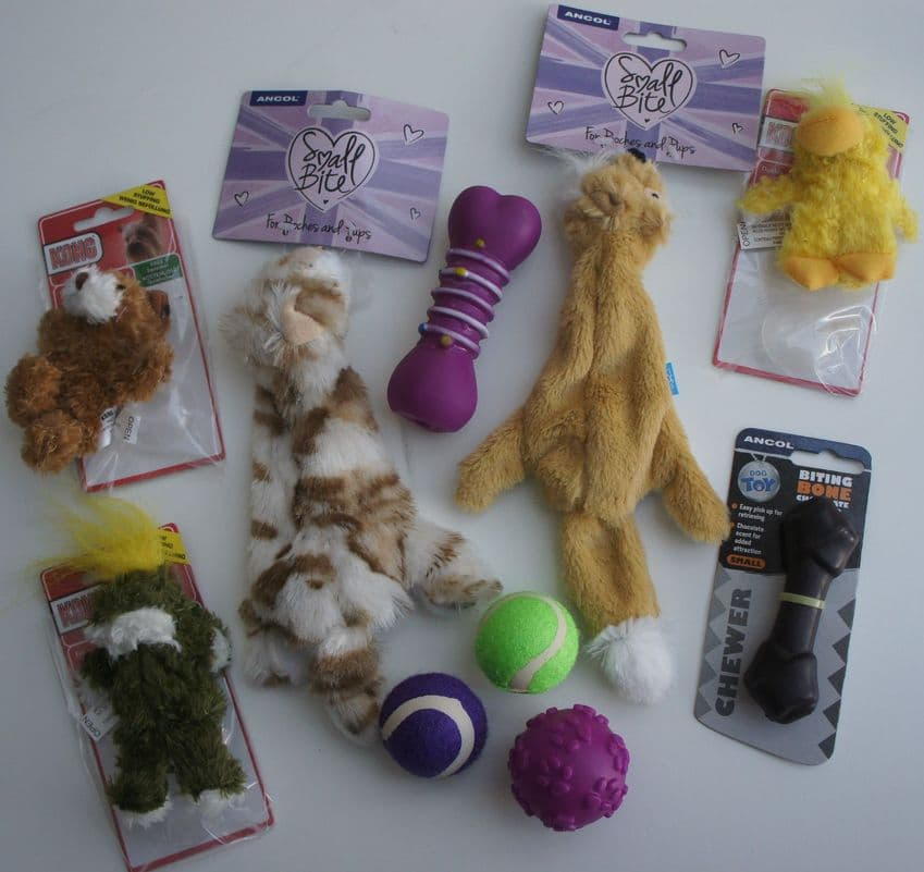 ASSORTED PUPPY OR SMALL DOG TOY SET OF 10