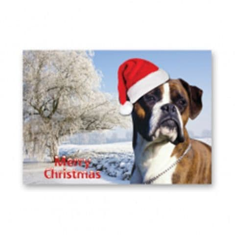 Boxer Dog Christmas Card choose one card or five