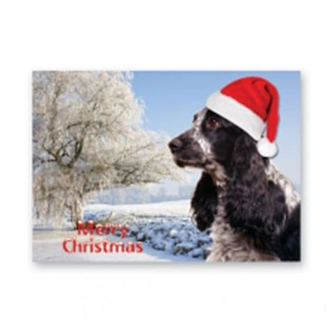 COCKER SPANIEL CHRISTMAS CARD