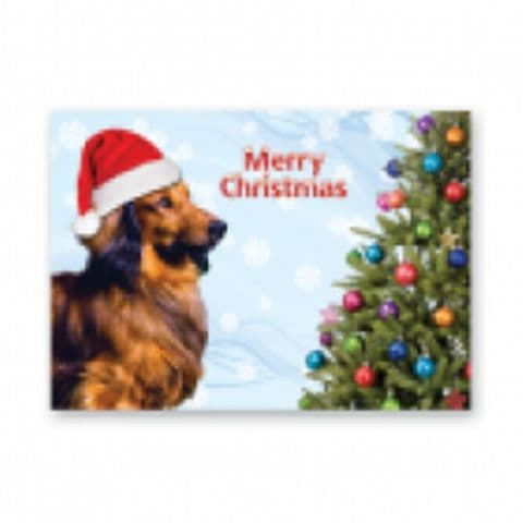 DACHSHUND CHRISTMAS GREETINGS CARD