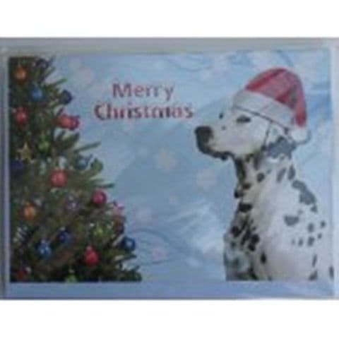 DALMATIAN DOG CHRISTMAS CARD pack of five