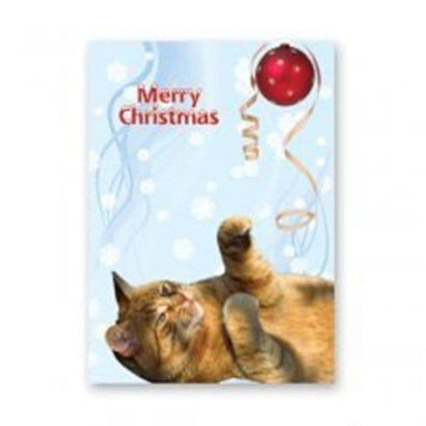 GINGER CAT CHRISTMAS GREETINGS CARD