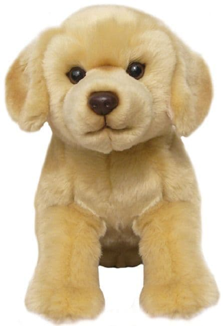 Golden Labrador, gift wrapped or not with or without engraved tag