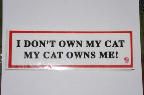 I DON'T OWN MY CAT MY CAT OWNS ME