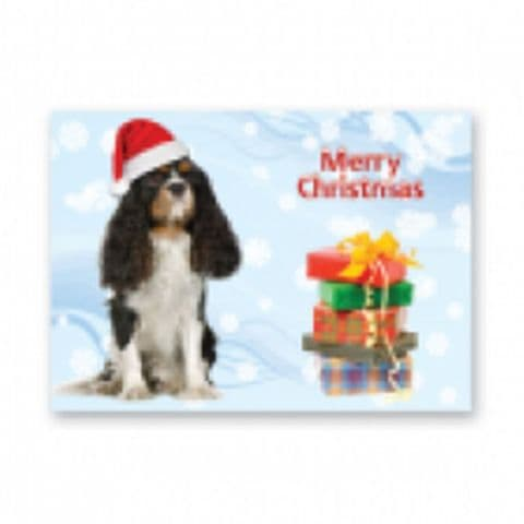 King Charles Cavalier Christmas card