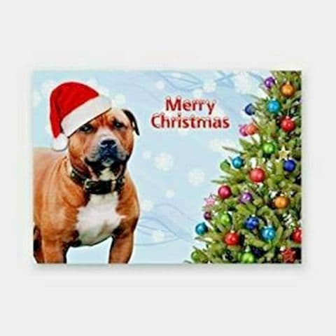 RED STAFFIE STAFFORDSHIRE TERRIER CHRISTMAS CARD DOG IN HAT WITH XMAS TREE