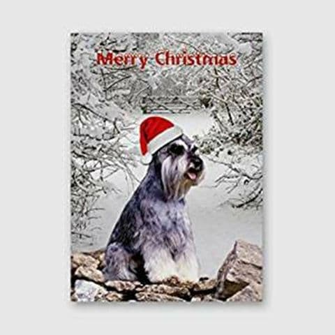 SCENIC SCHNAUZER CHRISTMAS CARD DOG IN XMAS HAT IN SNOW