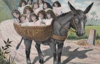 12 Children On A Overloaded Donkey Rides Antique Postcard