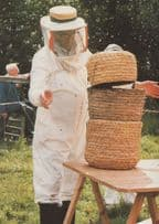 30,000 Bees Straw Hive Bee Transfer Brave Beekeeper Postcard