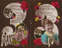 3rd Birthday Cats Dogs 2x Real Photo Greetings Postcard s