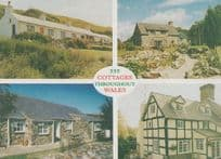 555 Cottages Throughout Wales Powys Holiday Cottage Advertising Postcard