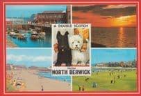 A Double Scotch Putting Greens Drinking North Berwick with Boat River Postcard
