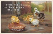 Armitages Dry Bird Food Baby Birds Chick Antique Advertising Postcard