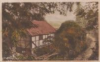 Autumn Day at Hindhead Broom Squires Cottage Vintage Surrey Postcard