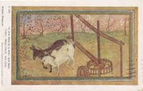 Bees With Ox & Mule at Indian Well Vintage Postcard