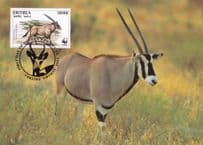 Beisa Oryx Antelope Eritria WWF Rare Stamp First Day Cover Postcard