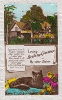 Black Cat On Green Antique Rug Bed Bedsheet Happy Birthday Sister RPC Postcard