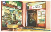 Bokin Reykjavik Iceland Bookstore Book Shop Oil Painting Postcard