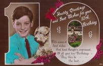Boy With Terrier Dog Greetings Antique Old 8th Birthday Postcard