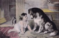 Cant You Talk Doctor Dolittle Style Antique Dog Cute Postcard