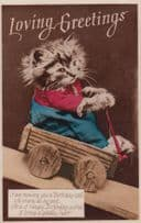 Cat In Truck Unique Old Transportation Car Loving Greetings RPC Old Postcard