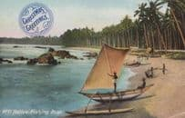 Ceylon India Indian Native Fishing Boat Ship Yacht Antique Postcard