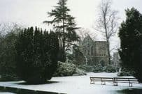 Chase Green Gardens Enfield In Bloom Christmas Snow Ice Postcard
