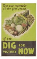 Dig For Victory Now Basket Of Vegetables Military WW2 Poster Postcard