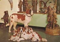 Dogs Woodcarvings at Brienz Switzerland Postcard