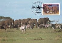 Elephant s Of Uganda With Zebras WWF Stamp First Day Cover Postcard