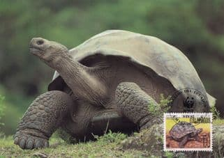 Giant Tortoise Galapagos WWF Stamp First Day Cover Postcard