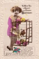 Girl Traps Garden Wren Birds In Cage Antique Birthday Greetings Postcard