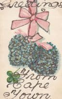 Greetings From Cape Town South Africa African REAL GLITTER ANTIQUE Postcard