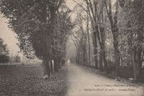 Hanneucourt Avenue Thiers French Old Postcard
