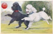 High Jinks Poodles With Balloons Tailwagger Dog Valentines Postcard