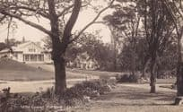 In The Domain Auckland New Zealand Real Photo Old Australia Postcard