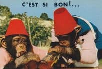 Monkey Chimpanzee PG Tips Style Chimp Tommy Cooper Hat Drunk On Beer Postcard