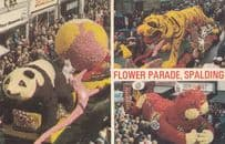 Panda & Chinese Cat Made Of Flowers Parade Spalding 1970s Postcard