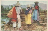 Returning To The Mexican Mexico Village Old Postcard