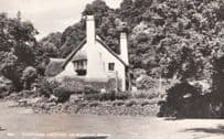 Selworthy Green Thatched Cottage RPC Real Photo Somerset Postcard