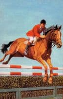 Show Jumping 1960s Horse Equestrian Painting Ladybird Postcard