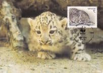 Snow Leopard Panthera Uncia WWF Rare Stamp FDC Postcard