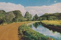 South African Irrigation Canal Transvaal Postcard