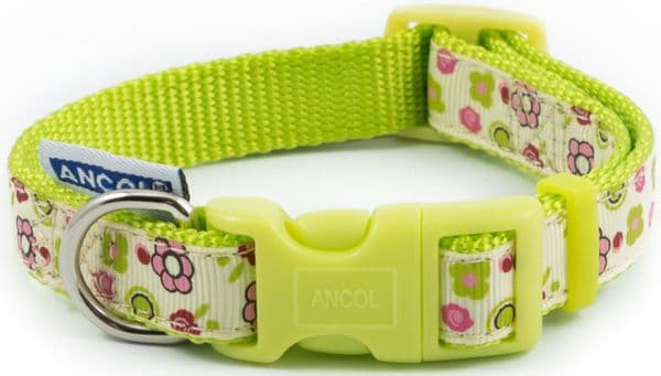Ancol Lime Flowers Adjustable Dog Collar