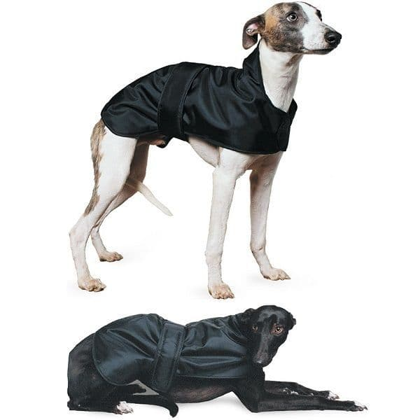 Ancol Whippet & Greyhound Dog Coat