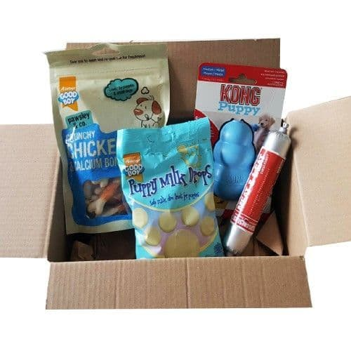Puppy Treat  Hamper with Blue Kong Toy