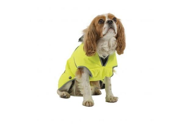 Stormguard Hi Viz Yellow Waterproof Dog Coat